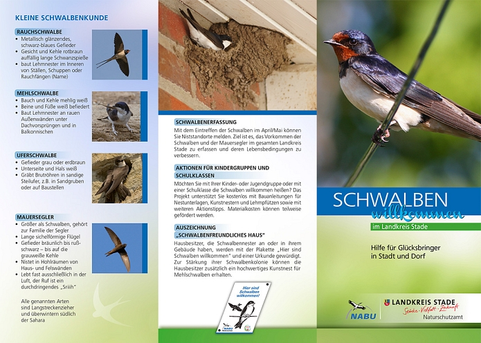 Flyer Schwalbenaktion © ICON Mediendesign